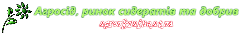 Агросід, ринок сидератів та добрив agroseed.com.ua